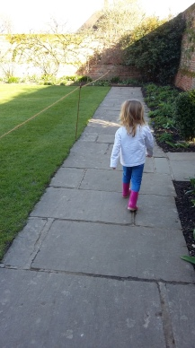 The Little Chick leads the way to the rose garden