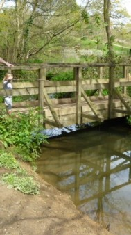 Pooh sticks bridge sissinghurst castle estate May 2016